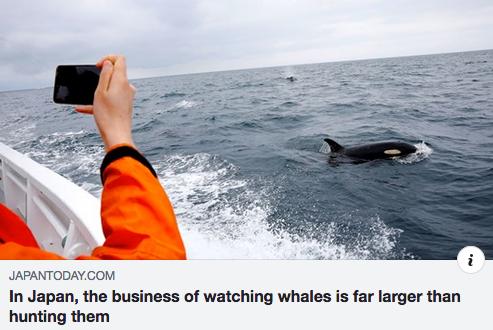 More Ocean positivism!