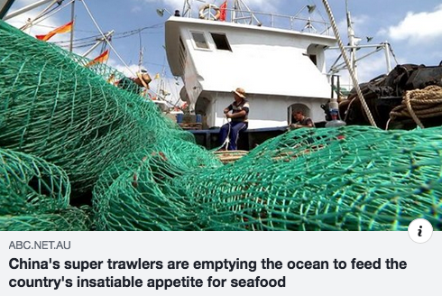China's super trawlers are stripping the ocean bare as its hunger for seafood grows