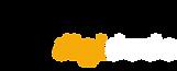 Digidude-Logo-flat-New-1340x540.png