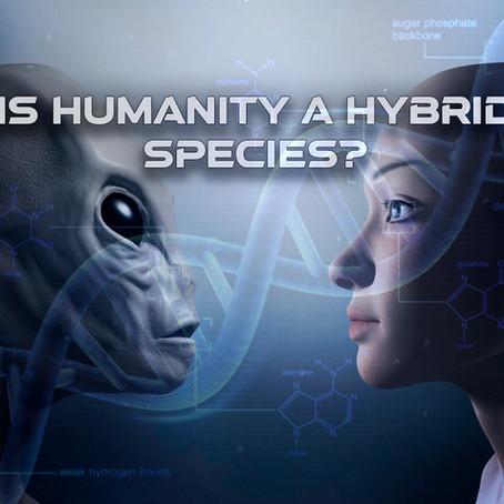 Is humanity a hybrid species?