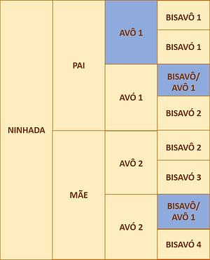 figura 3c.png