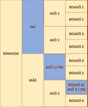 figura 4.png