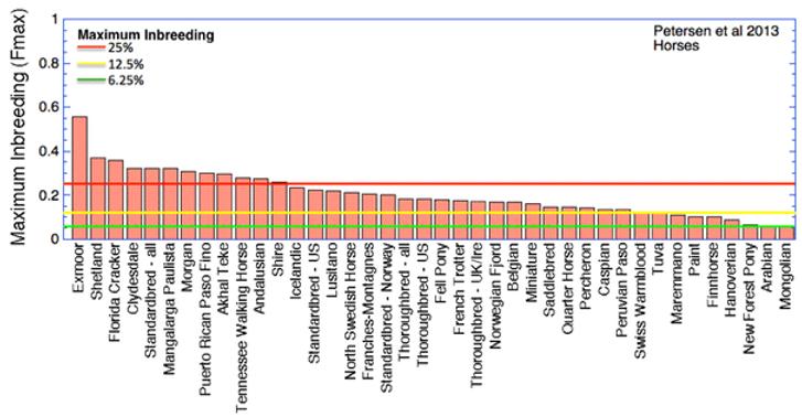 graf 3.png