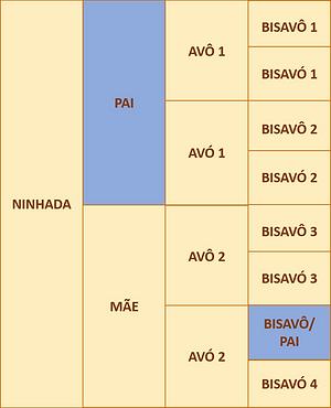 figura 3b.png