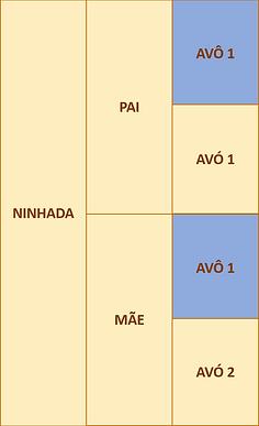 figura 2b.png