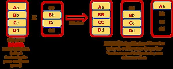 figura 1_.png