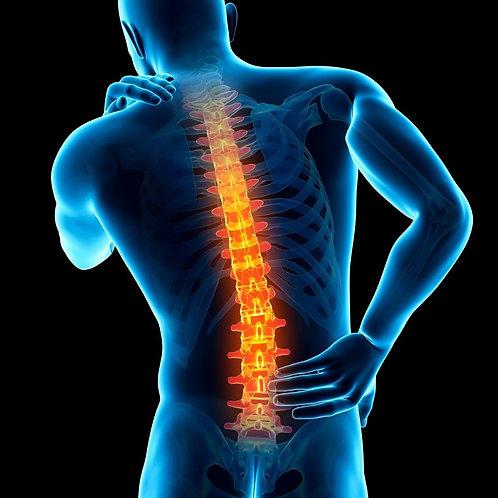 Back & Neck Pain Program