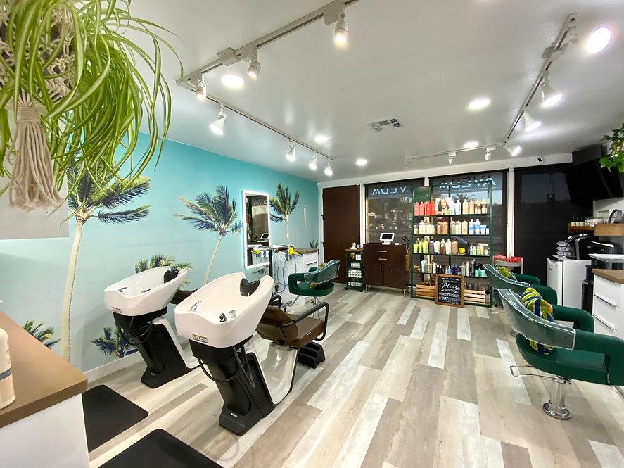 Salon View.jpg