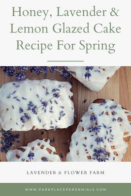 Honey, Lavender & Lemon Glazed Cake for Spring