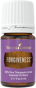 34. Forgiveness.png