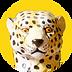 guepard_montreux.png