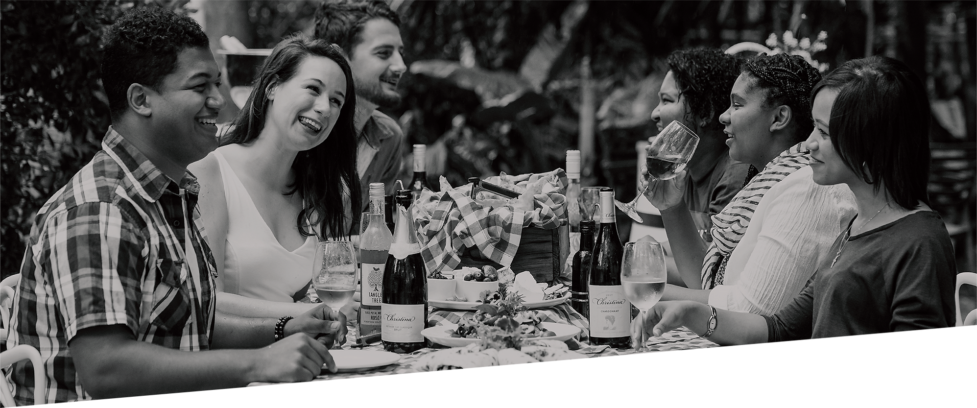 headerpic_wines.png