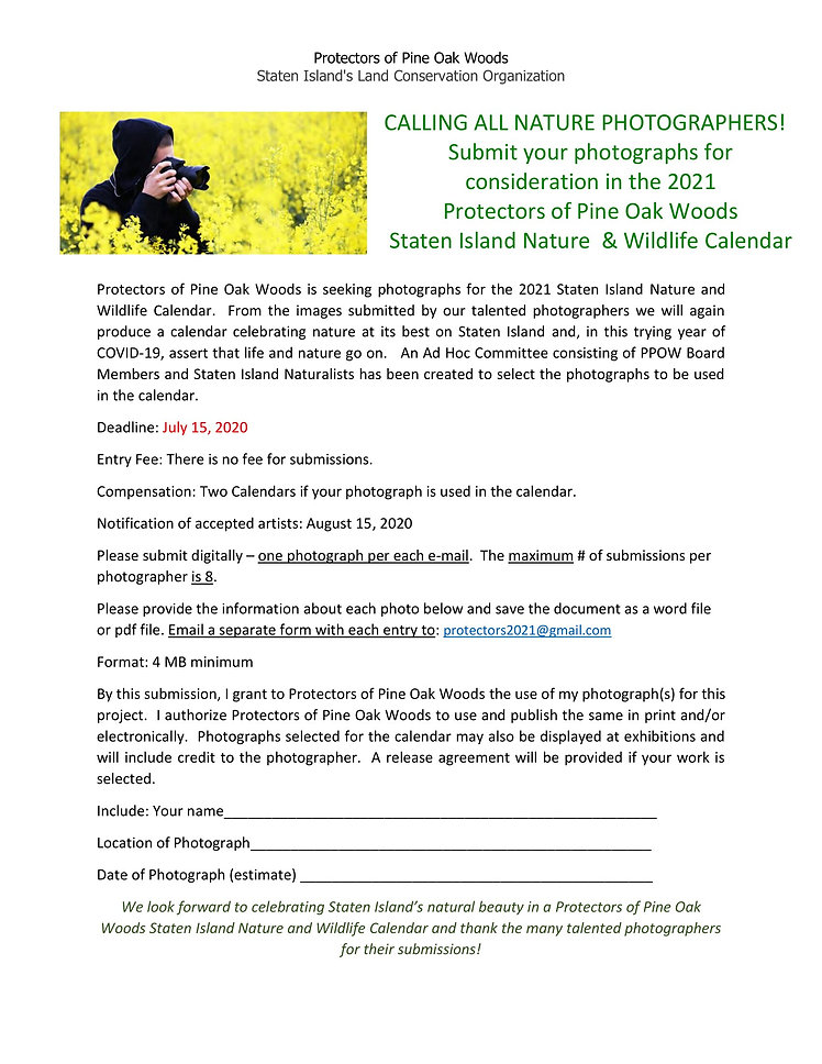 PPOW - 2021 - Calendar Submission Form