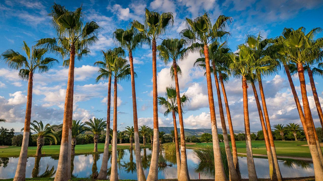 golf-amp-country-club-golf-poniente-gall