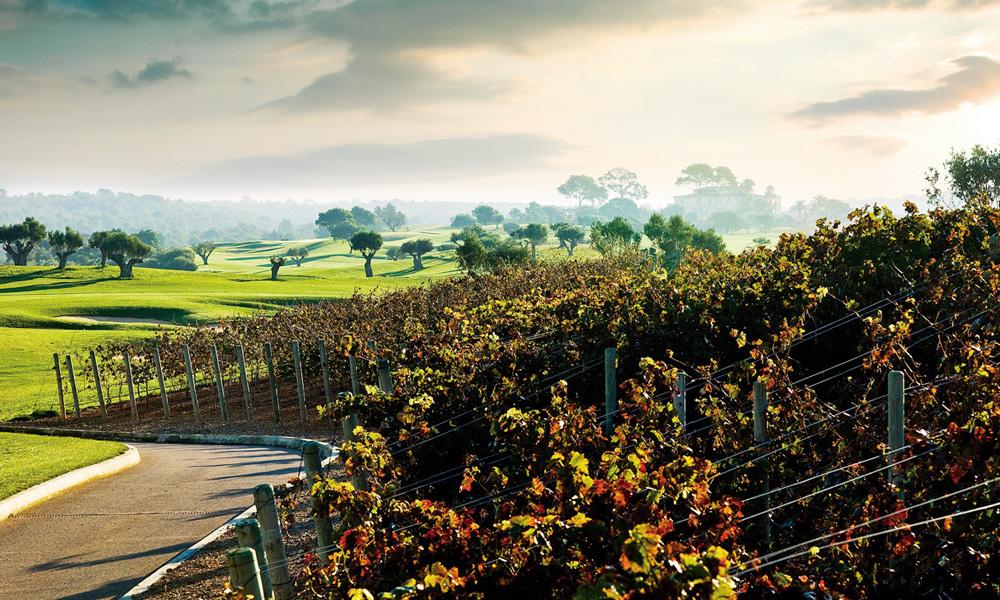golf-son-gual-mallorca-wine