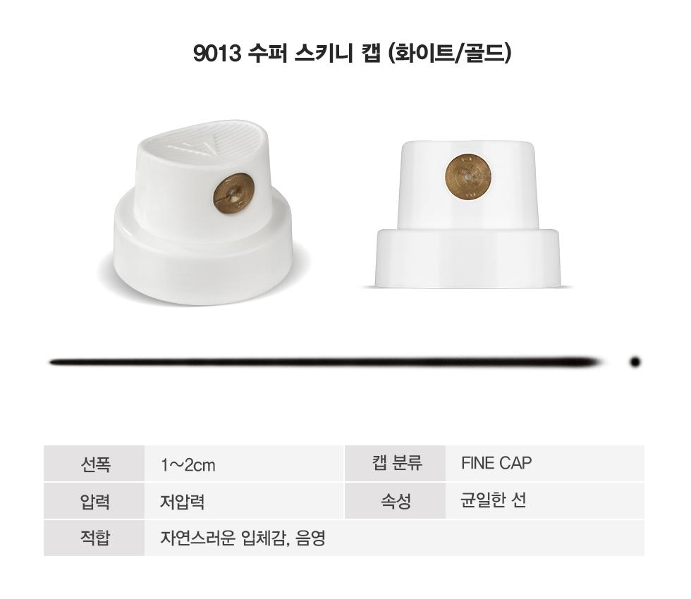 CAP_9013-1.png