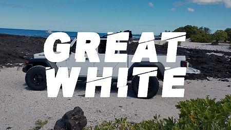 greatwhitehover_edited.jpg