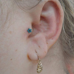 Fresh tragus with a eggplant abducted flower from neometal