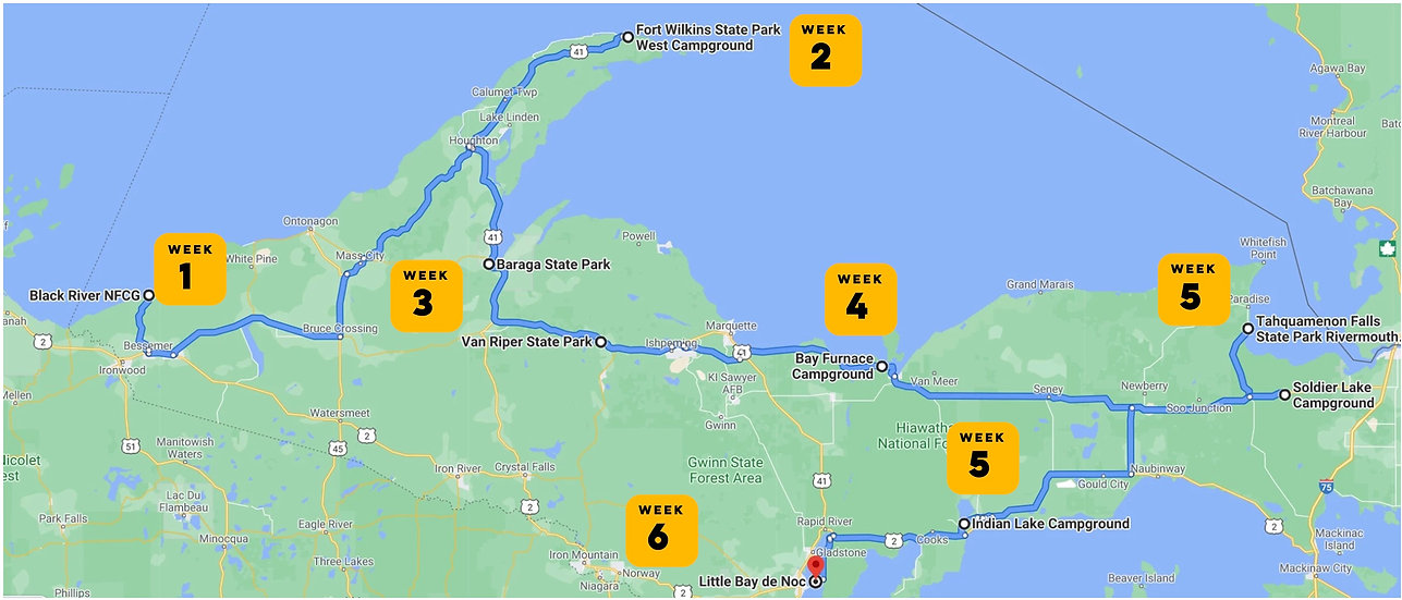 Covid Michigan 6 weeks.jpg