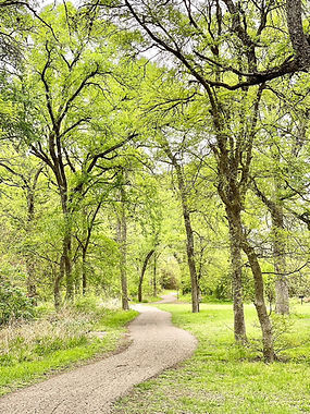 Jim Hogg Park McKinney Trail 1a - AUSTIN