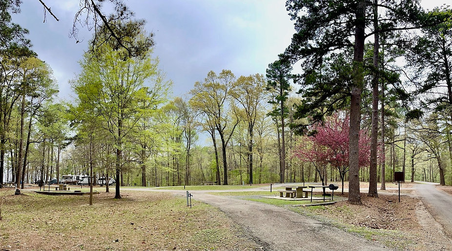 Mar 27 Piney Point Campsite2.JPG