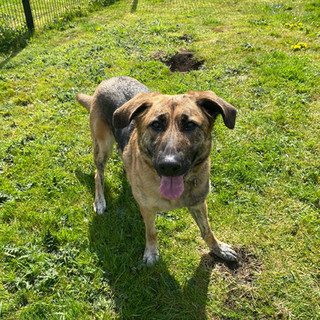 Kay (Reserved)