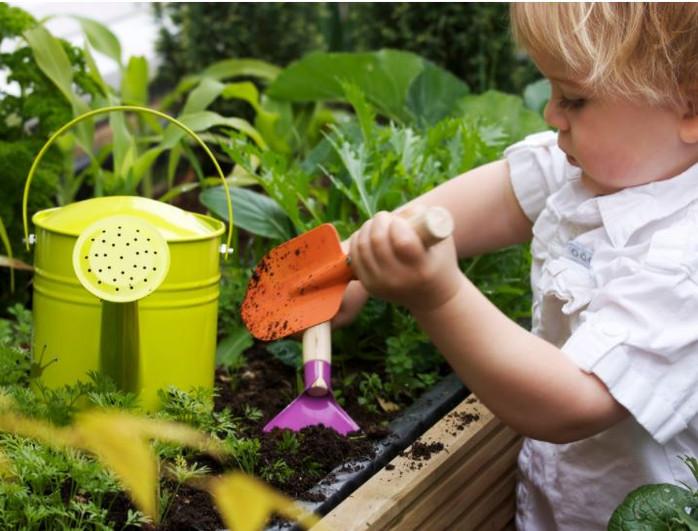 2021 BDN-Food Website Growing Food Pics.
