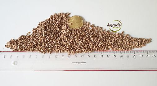 hueso de aceituna a granel