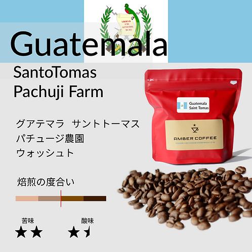 グアテマラ サントトーマス パチュージ農園 ウォッシュト(200g)
