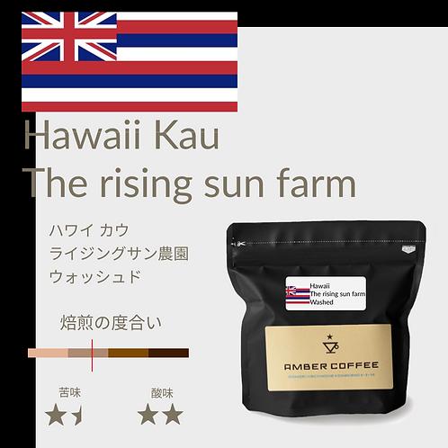 ハワイ カウ地区 ライジングサン農園 エステート ウォッシュト こちらの商品は店舗に直接お問い合わせください
