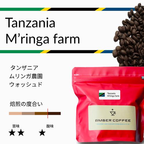 タンザニア ムリンガ農園 ウォッシュト(200g)