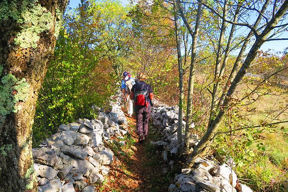 Kultiviertes Wandern im slowenischen Karst