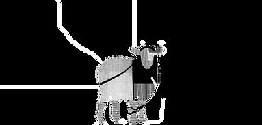 Black Sheep Transparent LOGO.png