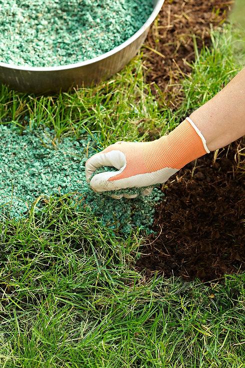 fertilizers.jpg