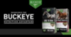 buckeye banner.jpg