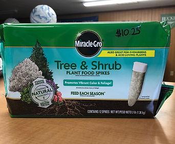 tree & shrub pic.jpg