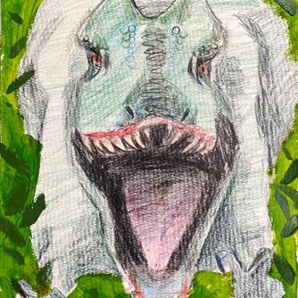 Dinosaur 🦖