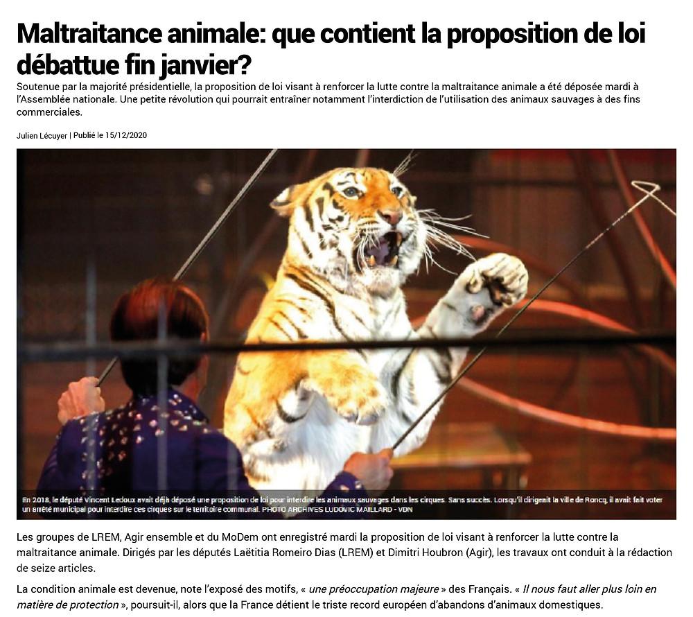 Maltraitance animale : que contient la proposition de loi débattue fin janvier ?
