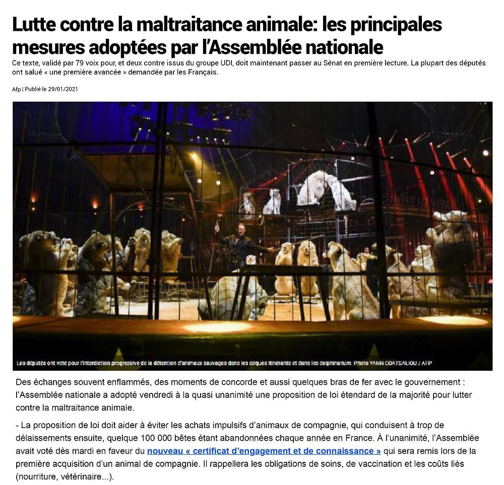 Lutte contre la maltraitance animale : les principales mesures adoptées par l'Assemblée nationale