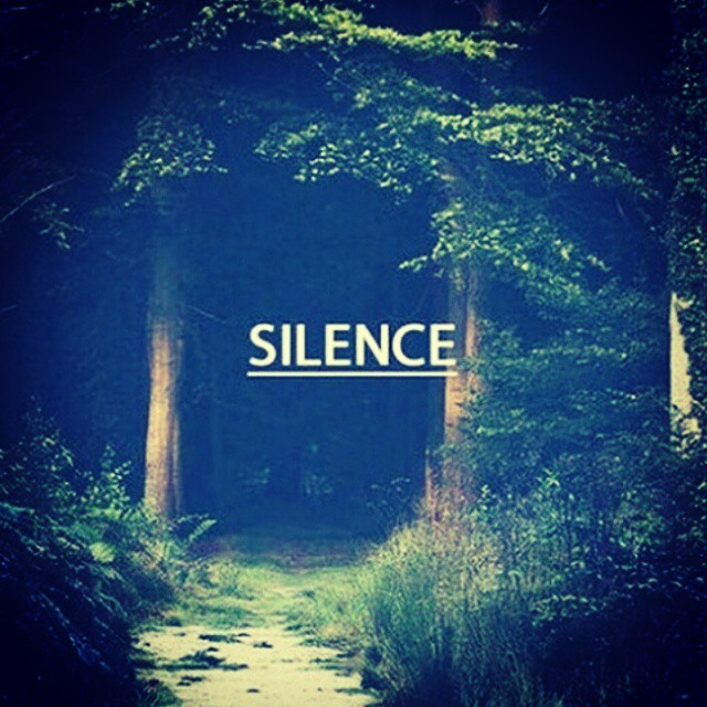 ... Music is in the Silence ..