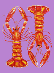 Langoustines On Purple Art Print