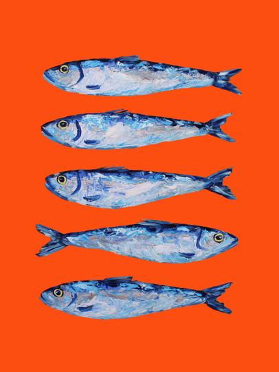 Sardines on Orange