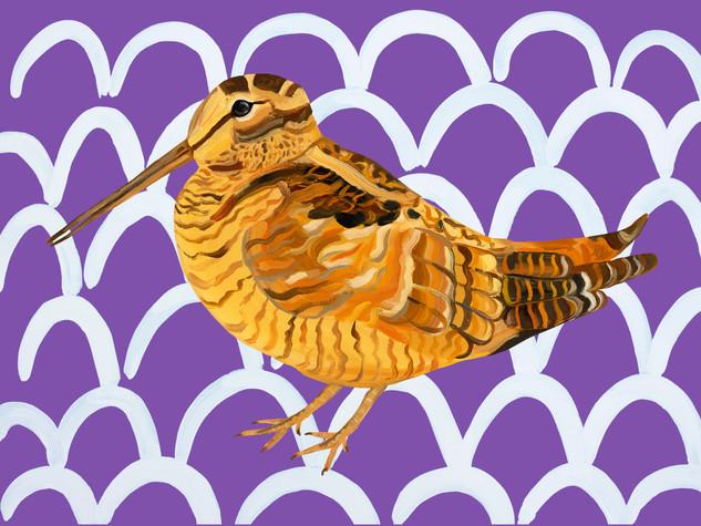 Wonderful Woodcock Wavey
