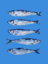 Sardines on Blue Art Print