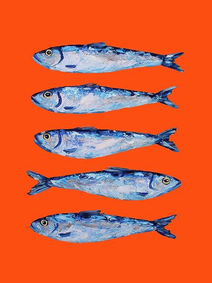 5 x Sardines Postcards