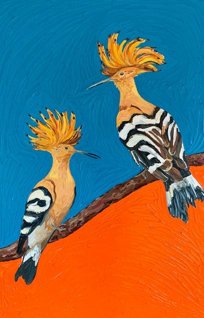 Hoopoe Birds (commission)