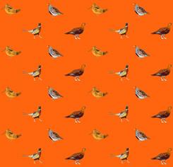 English Game Birds