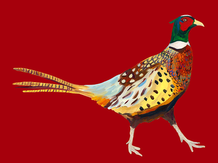 5 x Pheasant postcards