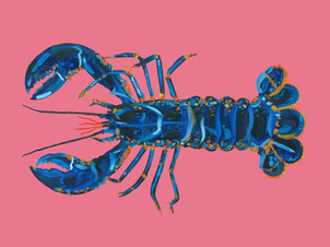 Lobster on Pink Art Print