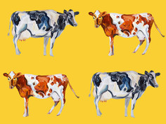 Cow Art On Yellow Art Print